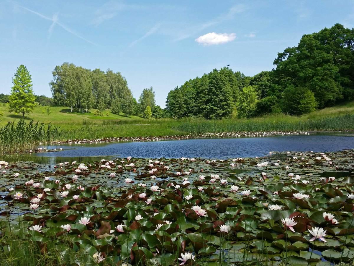 Botanical Garden in Myślęcinek